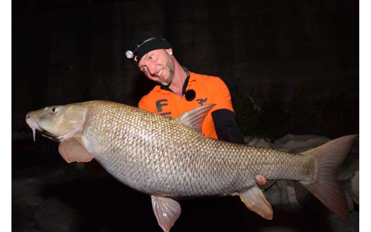 Belvárosi márna horgászat - FEEDERMANIA