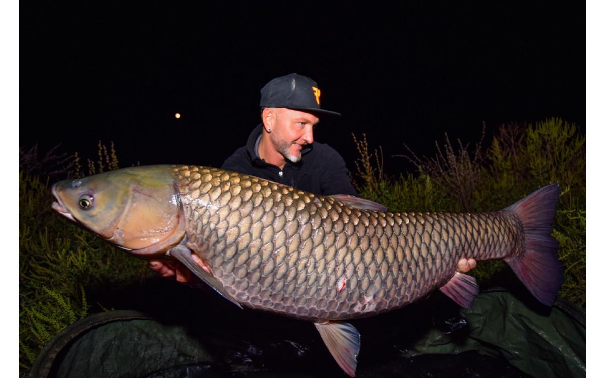 FEEDERMANIA - Csatorna horgászat
