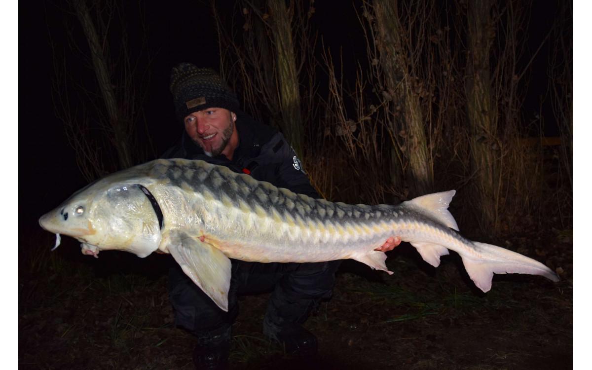 FEEDERMANIA - Téli éjszakai horgászat